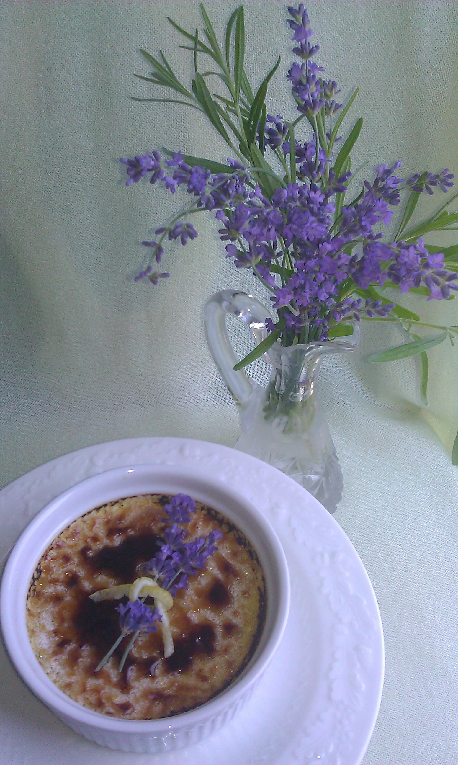 lavender creme brulee lavender creme brulee lavender ginger creme ...