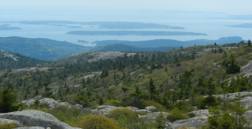 View from top of top of Cadillac Mountain