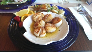 Scallops in Annapolis Royal
